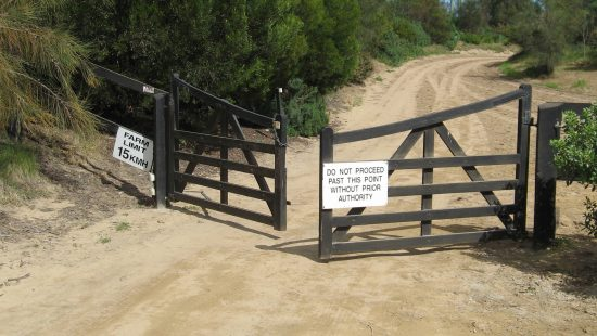 Double-Timber-Gates.jpg